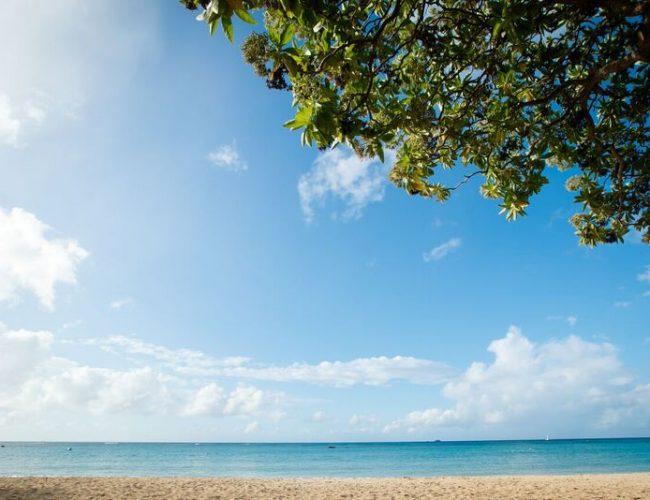 海を眺めながらハワイを感じる挙式を