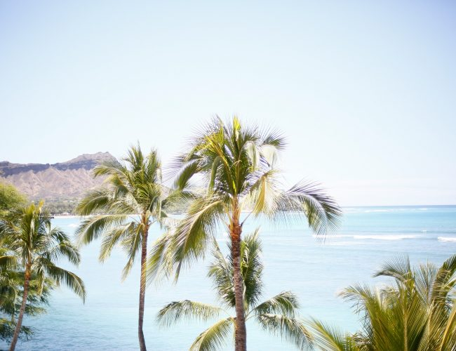 ~海を眺めながらハワイ気分~