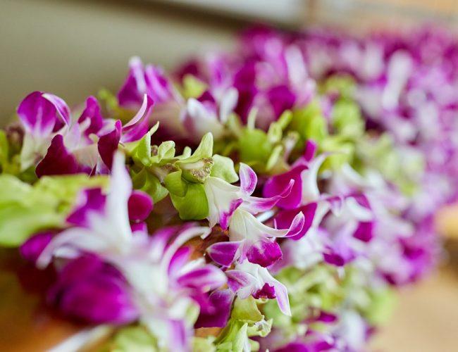 《 ハワイ挙式 》-②お申込後~お打合せ~ご出発までの流れ-